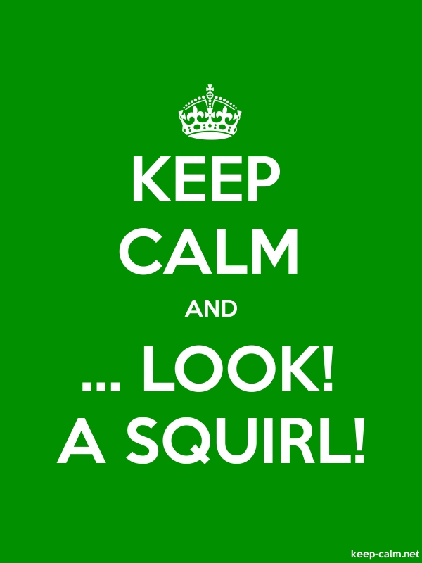 KEEP CALM AND ... LOOK! A SQUIRL! - white/green - Default (600x800)