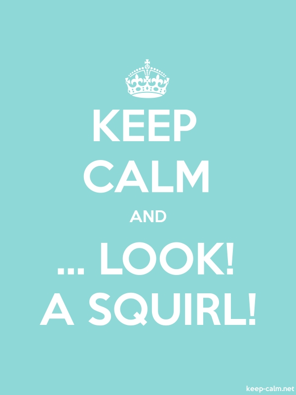KEEP CALM AND ... LOOK! A SQUIRL! - white/lightblue - Default (600x800)