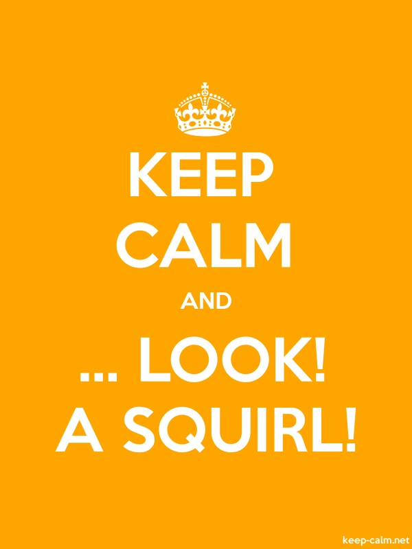 KEEP CALM AND ... LOOK! A SQUIRL! - white/orange - Default (600x800)