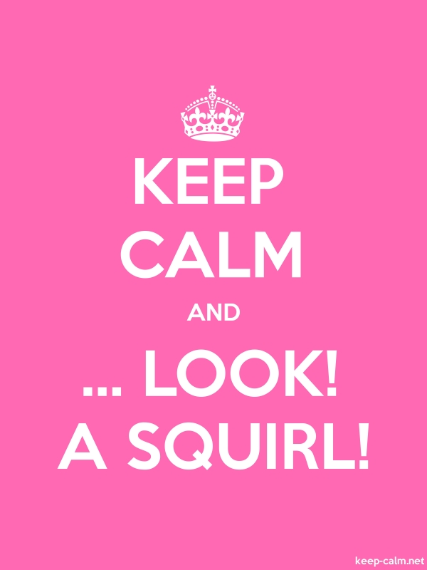 KEEP CALM AND ... LOOK! A SQUIRL! - white/pink - Default (600x800)