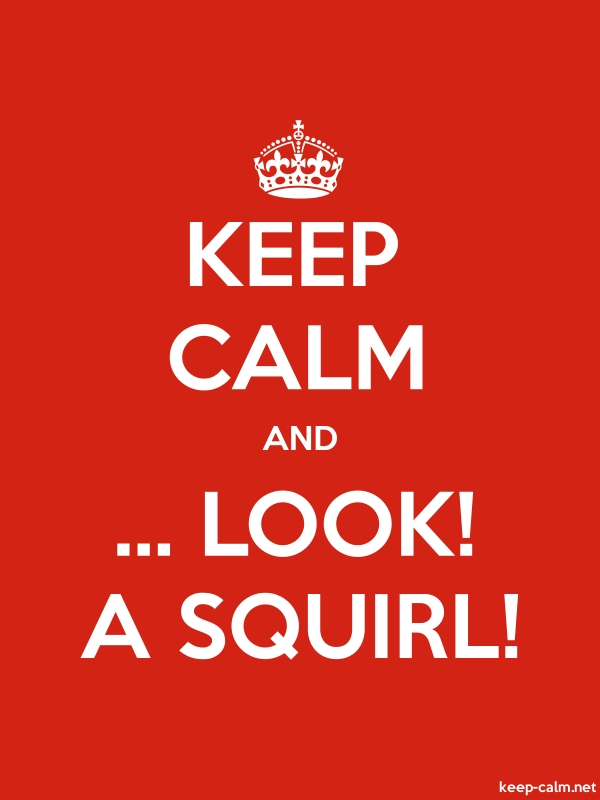 KEEP CALM AND ... LOOK! A SQUIRL! - white/red - Default (600x800)