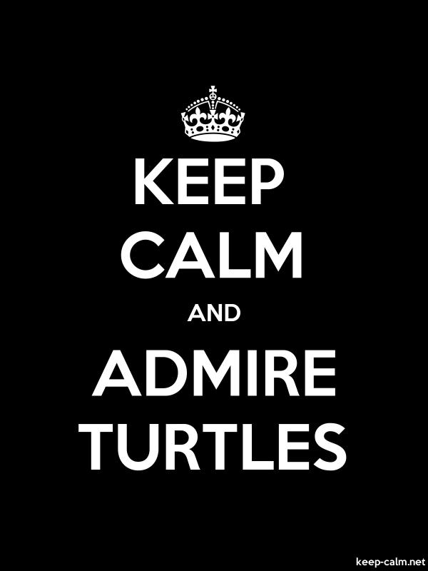 KEEP CALM AND ADMIRE TURTLES - white/black - Default (600x800)