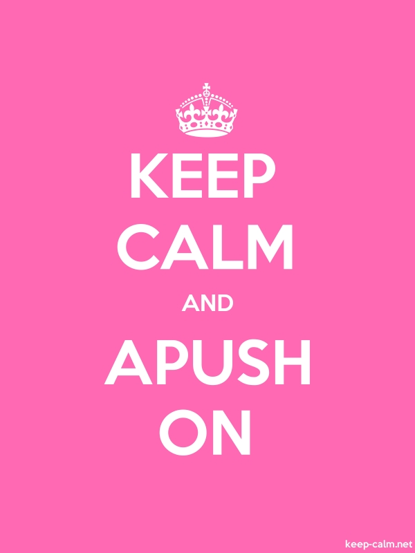 KEEP CALM AND APUSH ON - white/pink - Default (600x800)