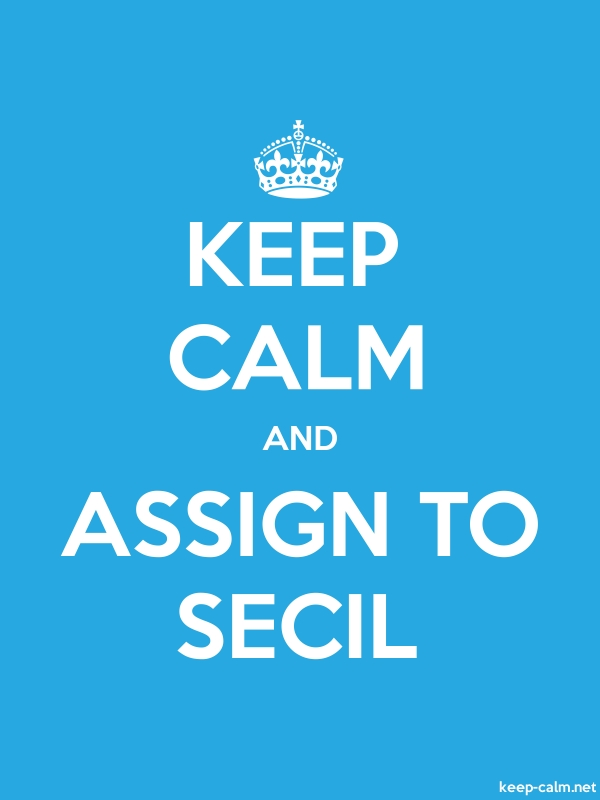 KEEP CALM AND ASSIGN TO SECIL - white/blue - Default (600x800)