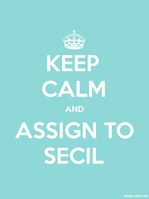 KEEP CALM AND ASSIGN TO SECIL - white/lightblue - Default (600x800)