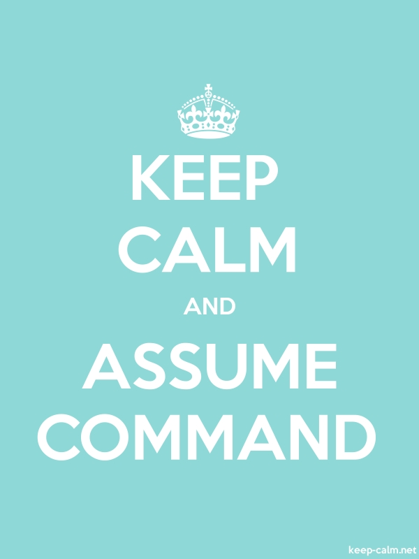 KEEP CALM AND ASSUME COMMAND - white/lightblue - Default (600x800)