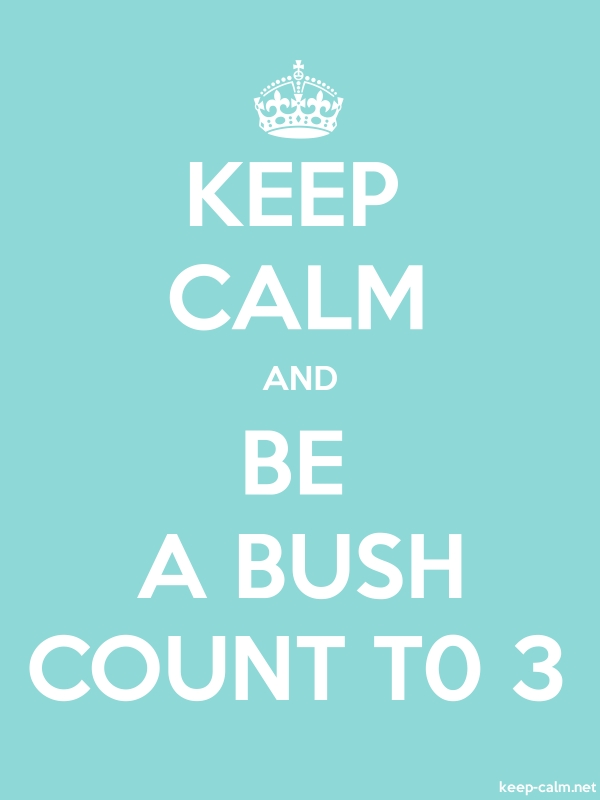 KEEP CALM AND BE A BUSH COUNT T0 3 - white/lightblue - Default (600x800)