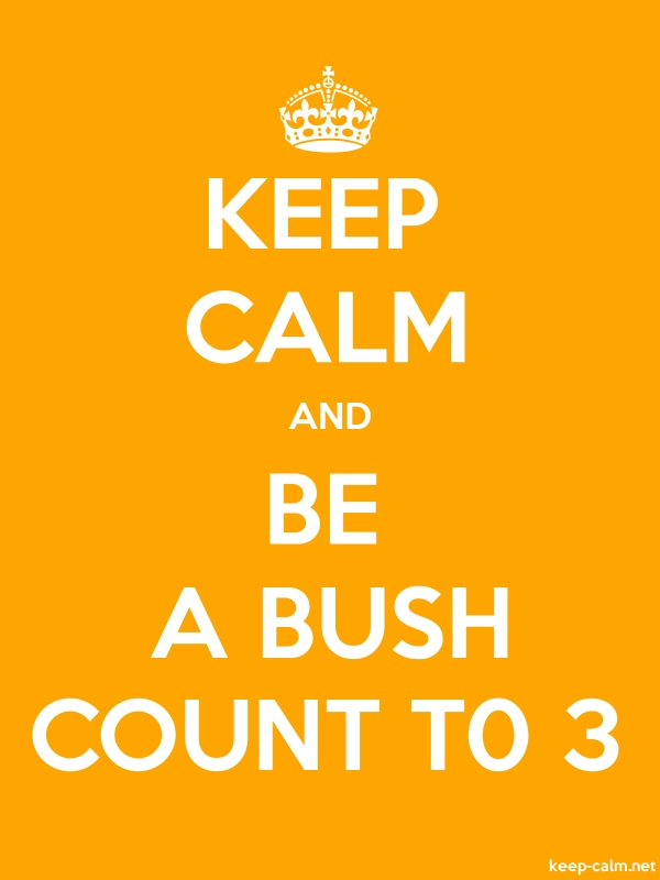 KEEP CALM AND BE A BUSH COUNT T0 3 - white/orange - Default (600x800)