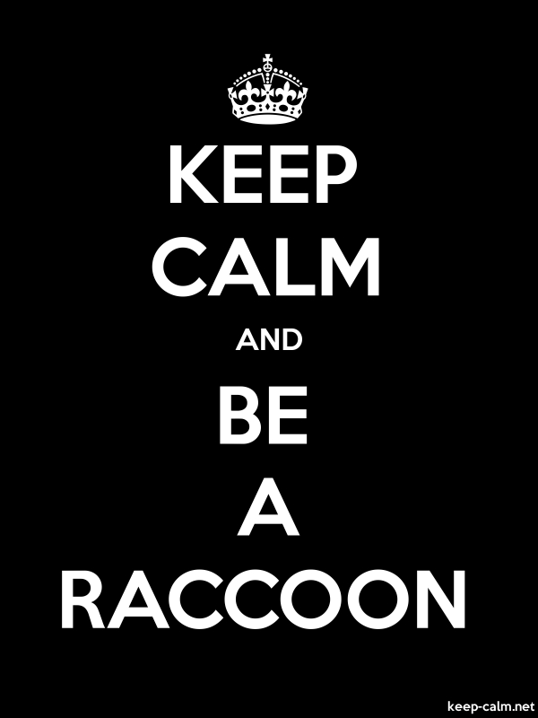 KEEP CALM AND BE A RACCOON - white/black - Default (600x800)