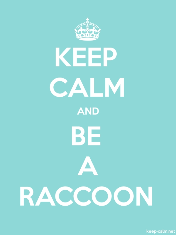 KEEP CALM AND BE A RACCOON - white/lightblue - Default (600x800)