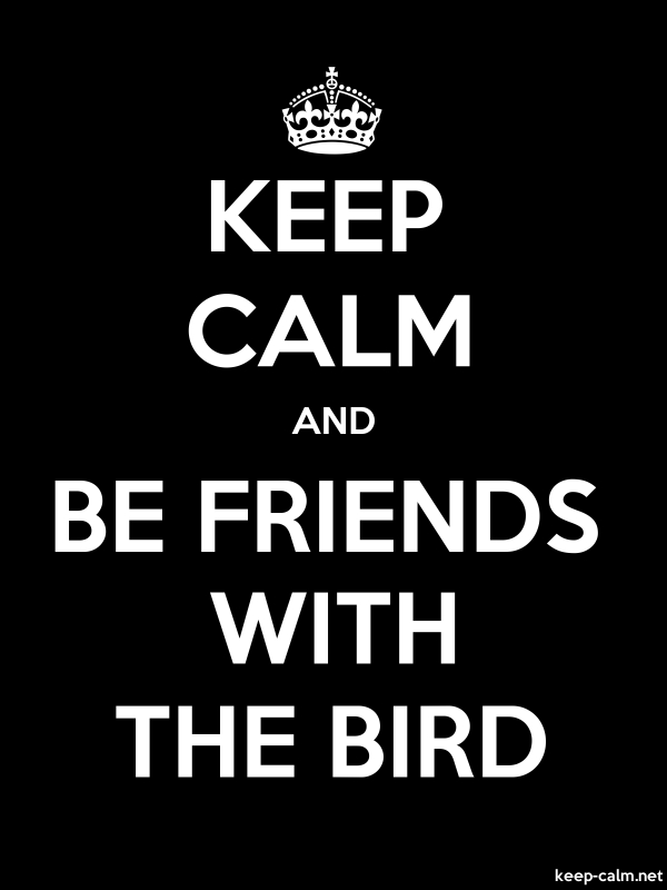 KEEP CALM AND BE FRIENDS WITH THE BIRD - white/black - Default (600x800)