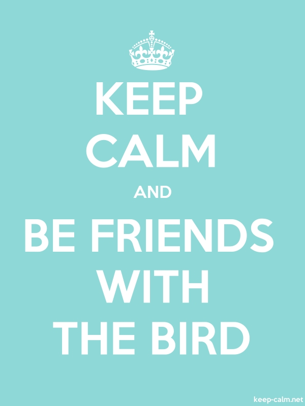 KEEP CALM AND BE FRIENDS WITH THE BIRD - white/lightblue - Default (600x800)