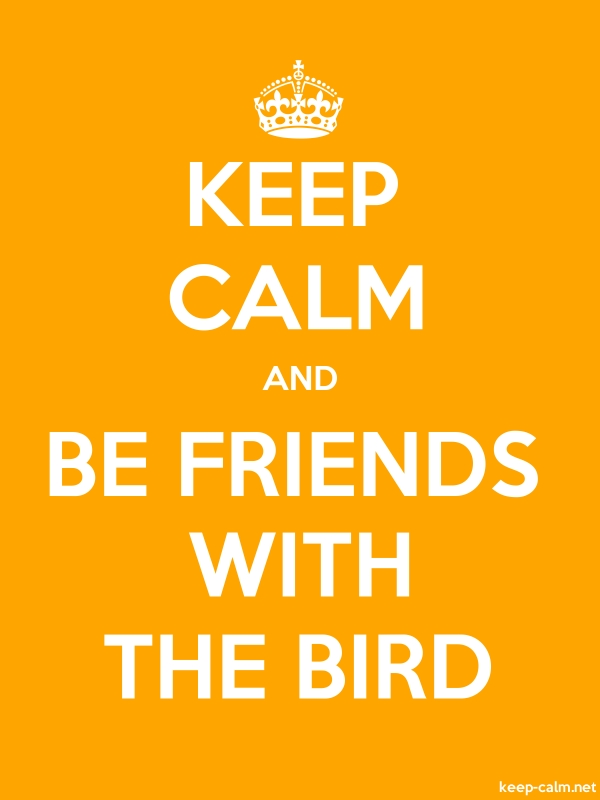 KEEP CALM AND BE FRIENDS WITH THE BIRD - white/orange - Default (600x800)