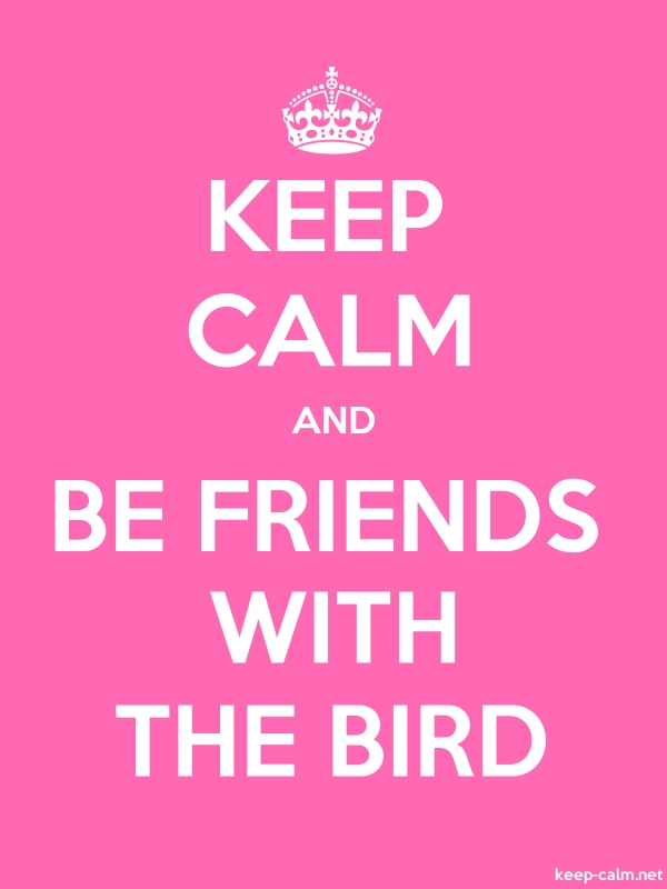KEEP CALM AND BE FRIENDS WITH THE BIRD - white/pink - Default (600x800)