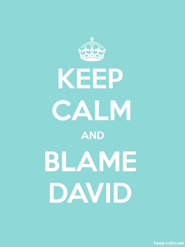 KEEP CALM AND BLAME DAVID - white/lightblue - Default (600x800)