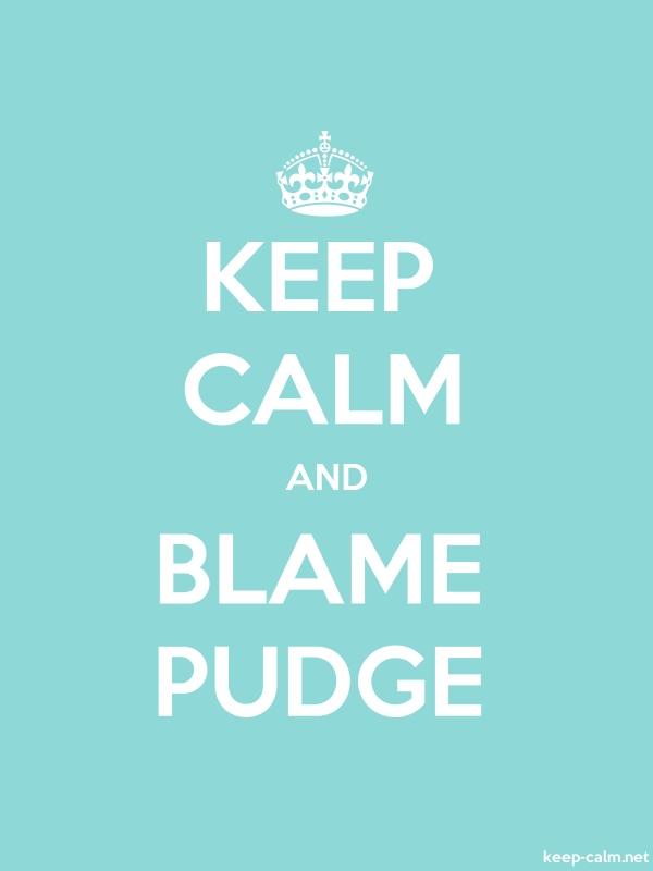 KEEP CALM AND BLAME PUDGE - white/lightblue - Default (600x800)