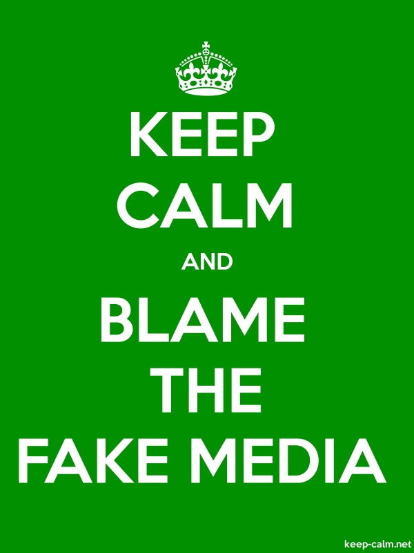 KEEP CALM AND BLAME THE FAKE MEDIA - white/green - Default (600x800)