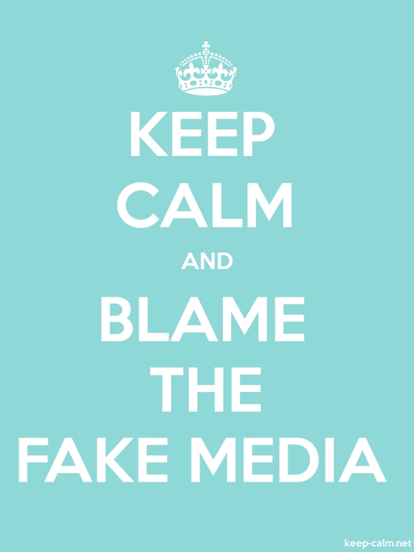 KEEP CALM AND BLAME THE FAKE MEDIA - white/lightblue - Default (600x800)