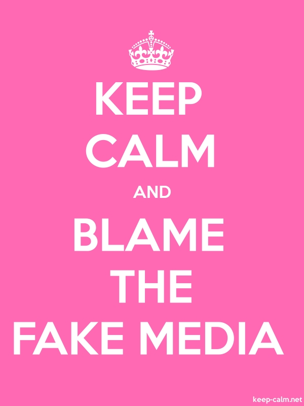 KEEP CALM AND BLAME THE FAKE MEDIA - white/pink - Default (600x800)