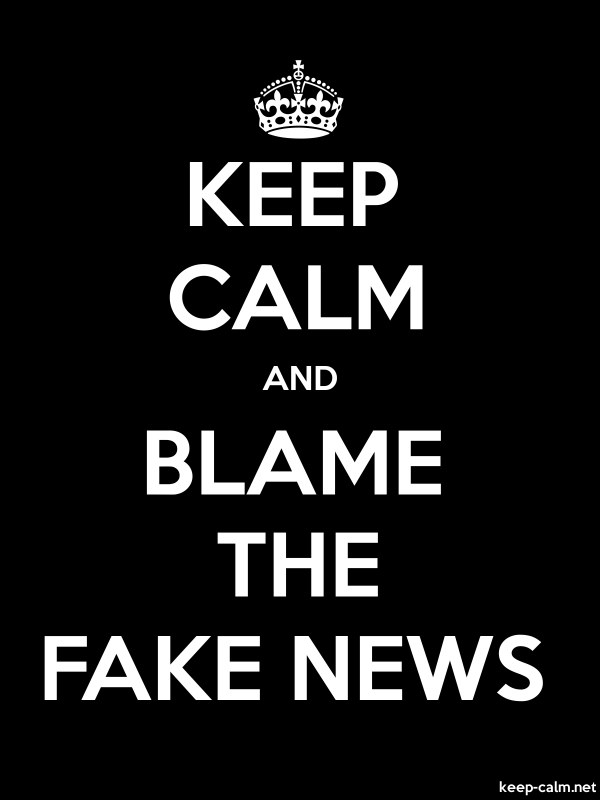 KEEP CALM AND BLAME THE FAKE NEWS - white/black - Default (600x800)