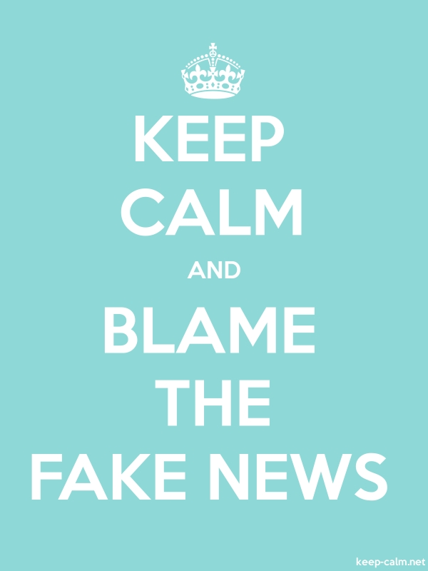 KEEP CALM AND BLAME THE FAKE NEWS - white/lightblue - Default (600x800)
