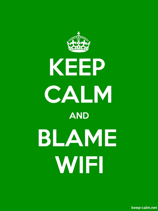 KEEP CALM AND BLAME WIFI - white/green - Default (600x800)