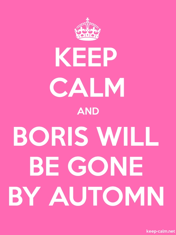 KEEP CALM AND BORIS WILL BE GONE BY AUTOMN - white/pink - Default (600x800)