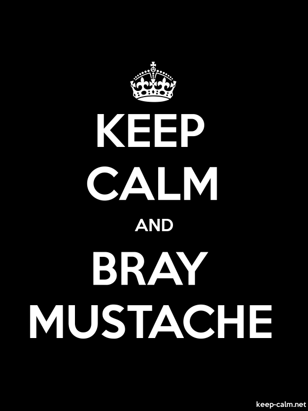 KEEP CALM AND BRAY MUSTACHE - white/black - Default (600x800)