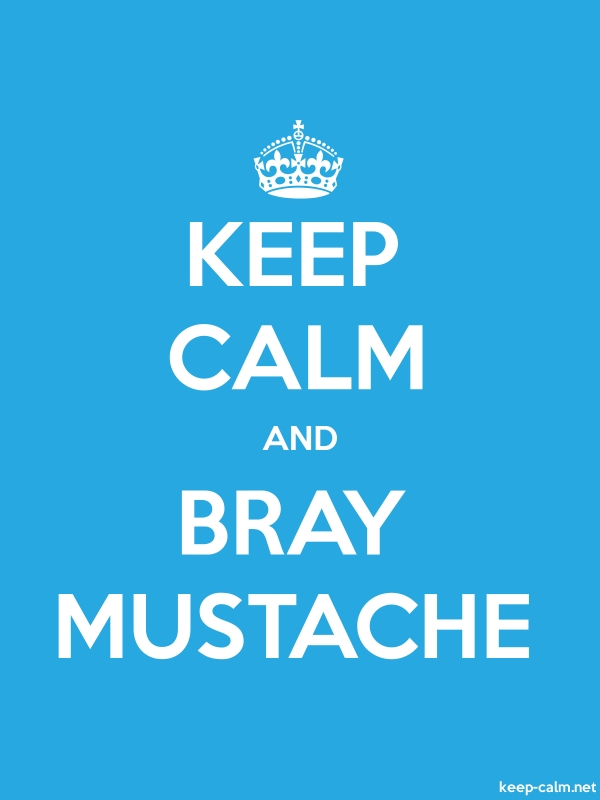 KEEP CALM AND BRAY MUSTACHE - white/blue - Default (600x800)