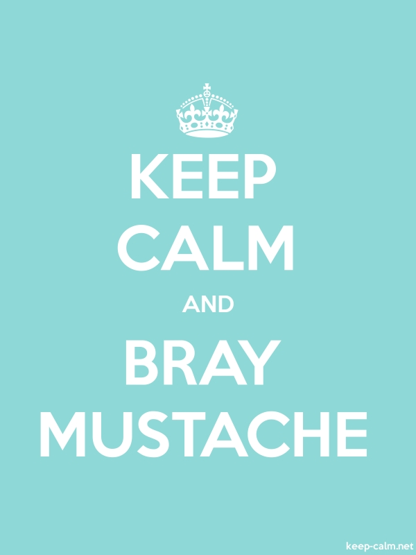 KEEP CALM AND BRAY MUSTACHE - white/lightblue - Default (600x800)