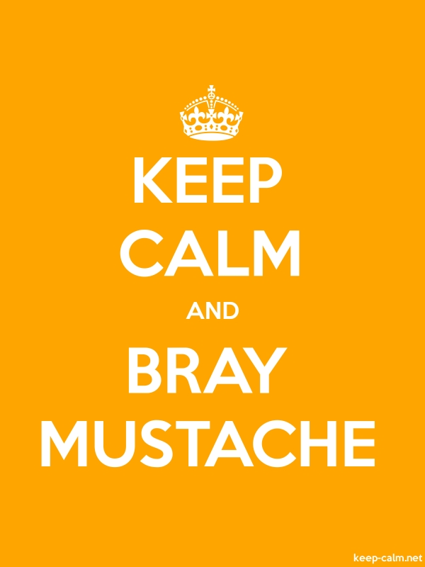KEEP CALM AND BRAY MUSTACHE - white/orange - Default (600x800)