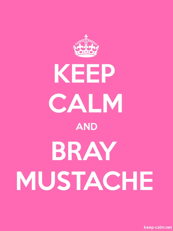 KEEP CALM AND BRAY MUSTACHE - white/pink - Default (600x800)