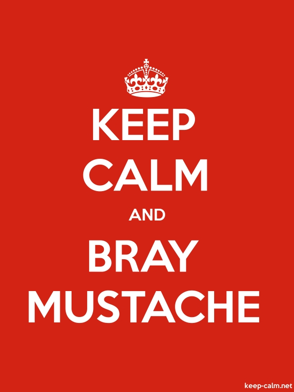 KEEP CALM AND BRAY MUSTACHE - white/red - Default (600x800)