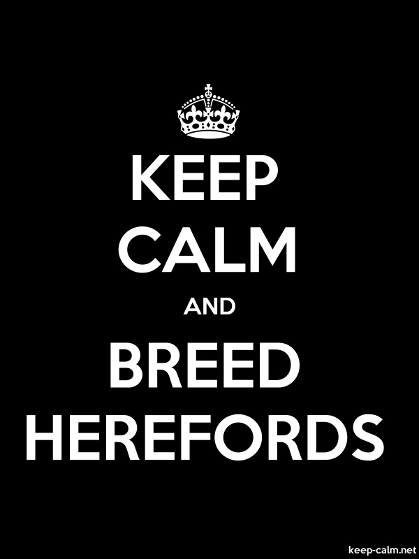 KEEP CALM AND BREED HEREFORDS - white/black - Default (600x800)