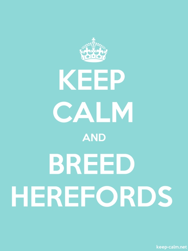 KEEP CALM AND BREED HEREFORDS - white/lightblue - Default (600x800)
