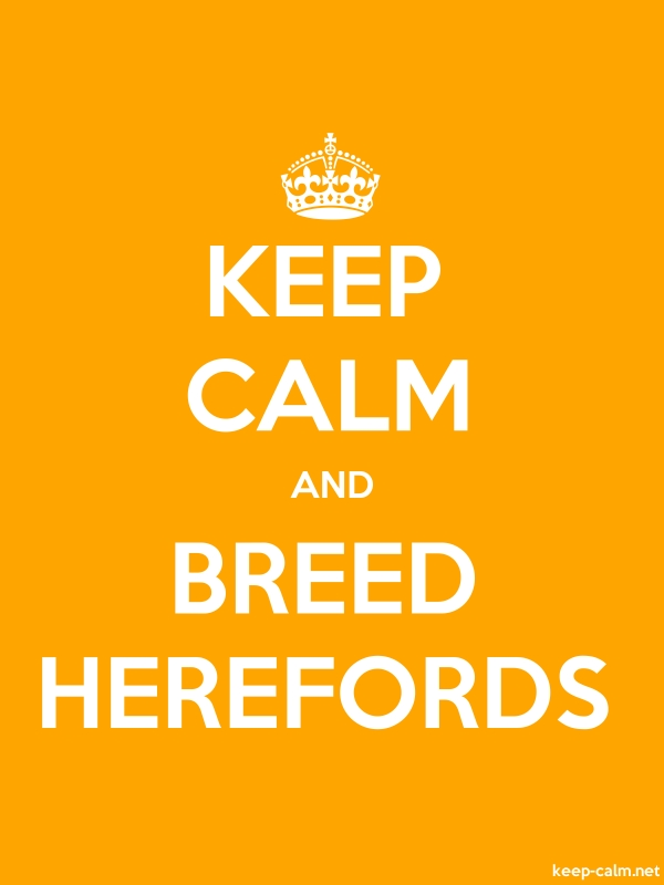 KEEP CALM AND BREED HEREFORDS - white/orange - Default (600x800)