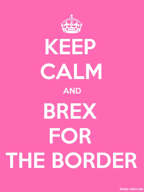 KEEP CALM AND BREX FOR THE BORDER - white/pink - Default (600x800)