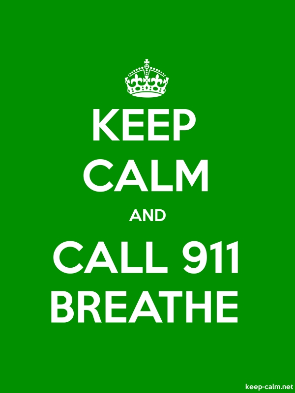 KEEP CALM AND CALL 911 BREATHE - white/green - Default (600x800)