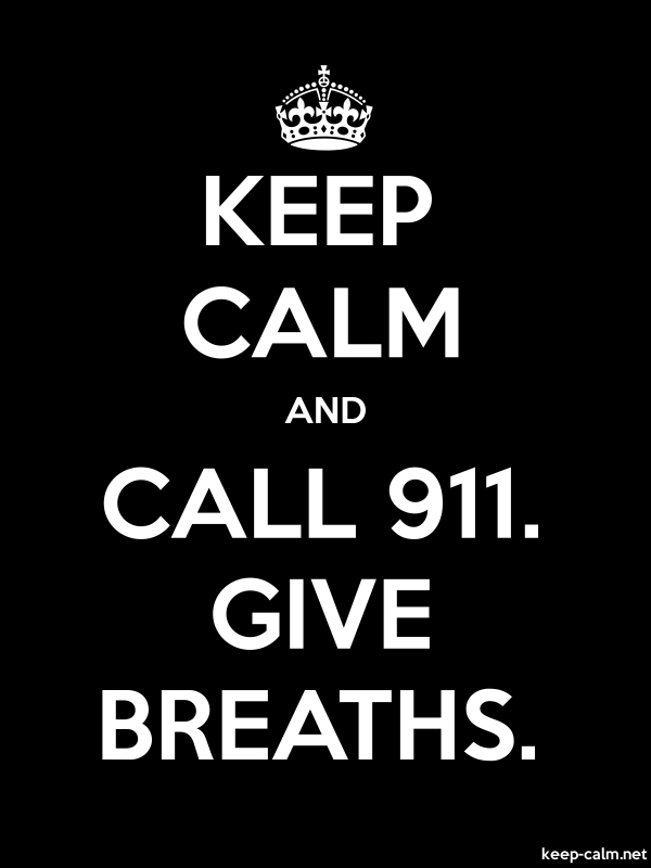 KEEP CALM AND CALL 911. GIVE BREATHS. - white/black - Default (600x800)
