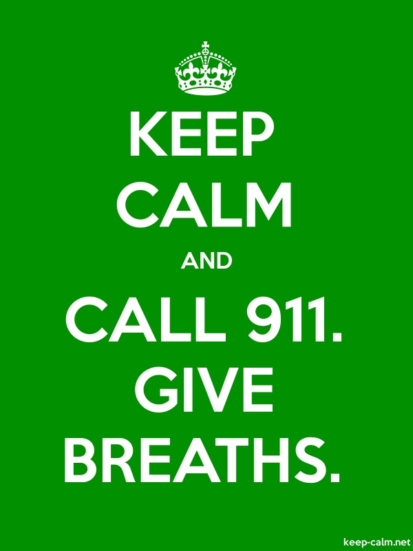 KEEP CALM AND CALL 911. GIVE BREATHS. - white/green - Default (600x800)