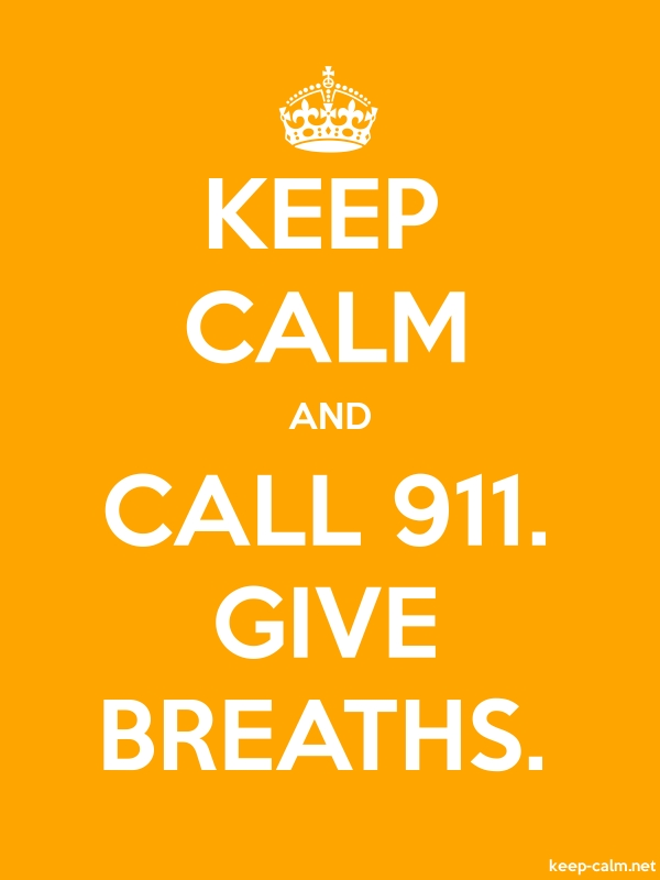 KEEP CALM AND CALL 911. GIVE BREATHS. - white/orange - Default (600x800)