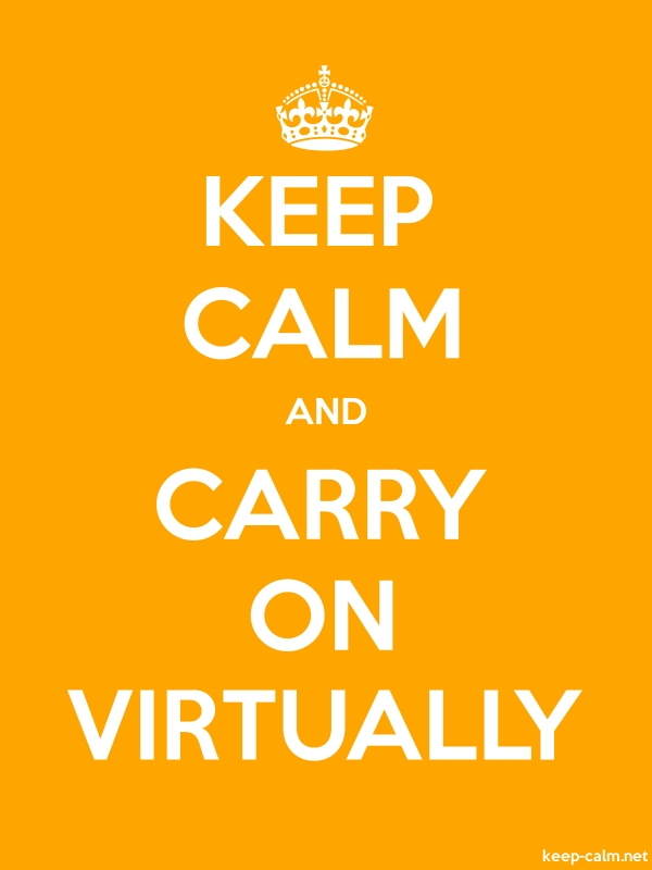 KEEP CALM AND CARRY ON VIRTUALLY - white/orange - Default (600x800)