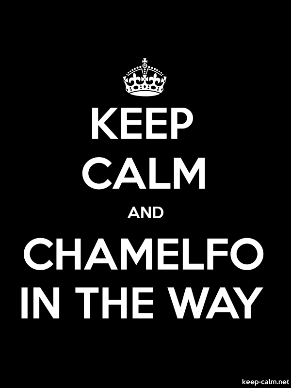 KEEP CALM AND CHAMELFO IN THE WAY - white/black - Default (600x800)