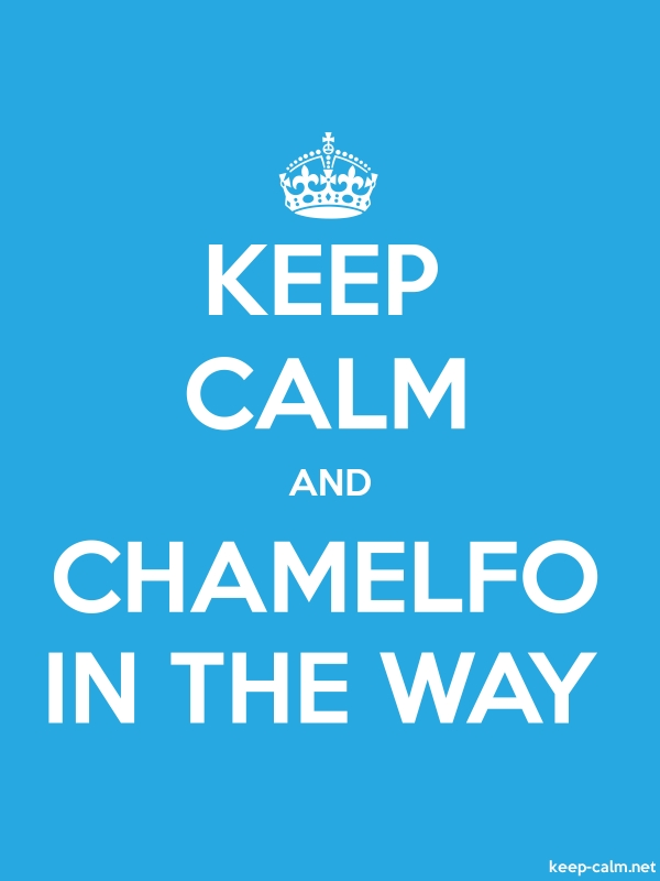 KEEP CALM AND CHAMELFO IN THE WAY - white/blue - Default (600x800)