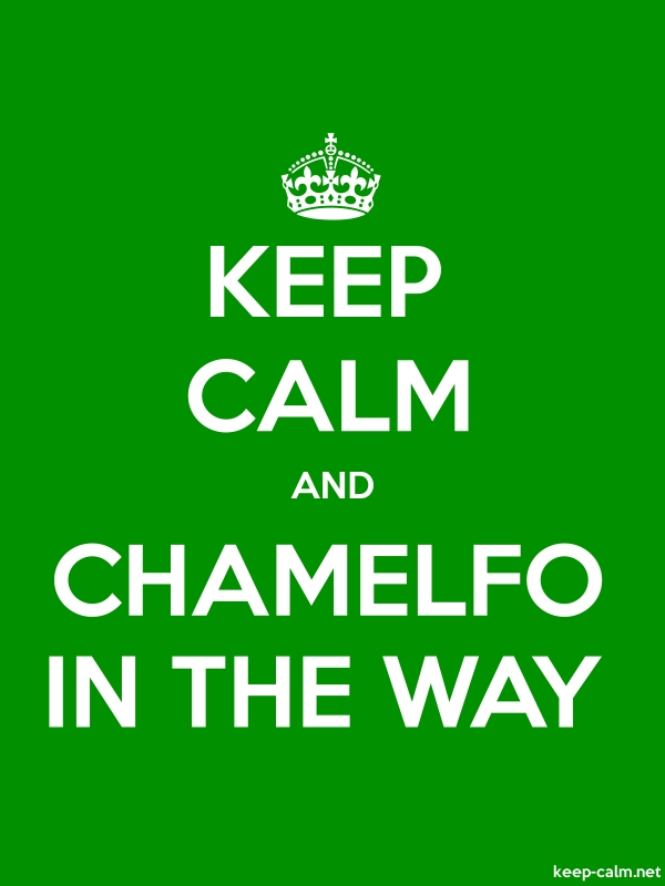 KEEP CALM AND CHAMELFO IN THE WAY - white/green - Default (600x800)