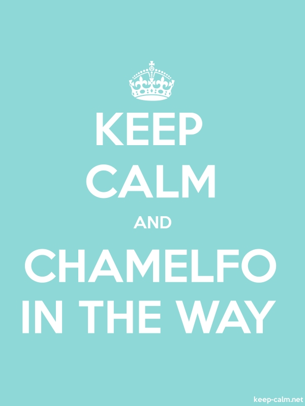 KEEP CALM AND CHAMELFO IN THE WAY - white/lightblue - Default (600x800)