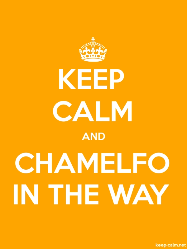 KEEP CALM AND CHAMELFO IN THE WAY - white/orange - Default (600x800)