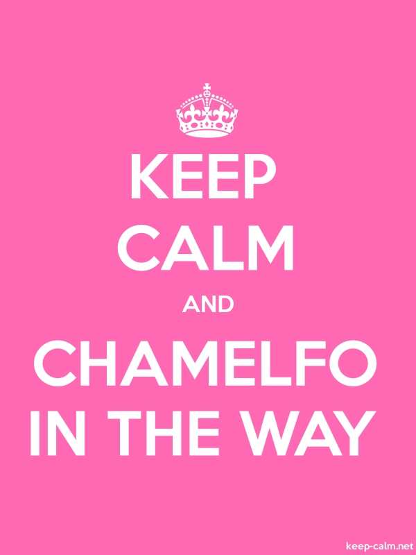 KEEP CALM AND CHAMELFO IN THE WAY - white/pink - Default (600x800)