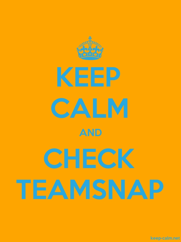 KEEP CALM AND CHECK TEAMSNAP - blue/orange - Default (600x800)