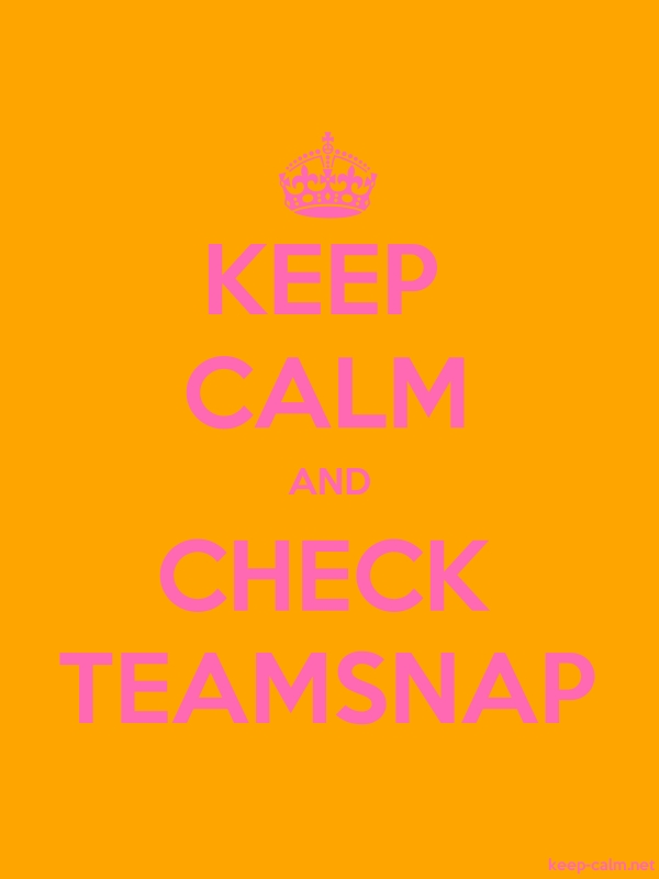 KEEP CALM AND CHECK TEAMSNAP - pink/orange - Default (600x800)